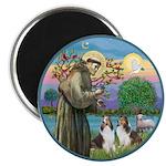 St Francis (W) - 2 Shelties (D&L) Magnet