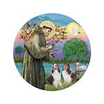 St Francis (W) - 2 Shelties (D&L) 3.5