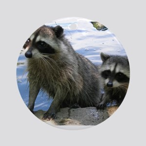 Racoon Buddies Ornament (Round)