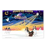 XmasSunrise/2 Shelties (dl) Postcards (Package of