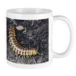 Millipede Mug
