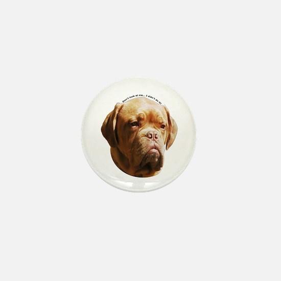 Cute Dogue de bordeaux Mini Button