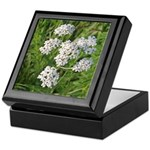 Wild Yarrow Keepsake Box
