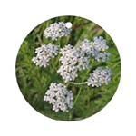 Wild Yarrow Ornament (Round)