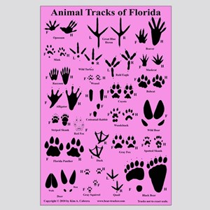 Animal Tracks Florida Pink Large Poster