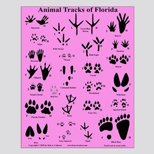 Florida Animal Tracks Purple Small Poster