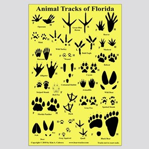 Animal Tracks Florida Lt. Orange Large Poster