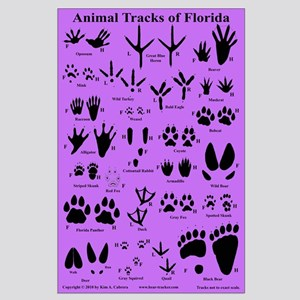 Animal Tracks Florida Purple Large Poster