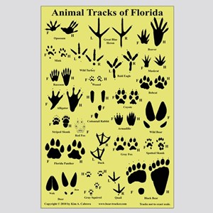 Animal Tracks Florida Tan Large Poster