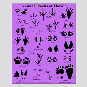 Animal Tracks of Florida Purple Small Poster