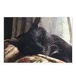 Sunny Siesta Postcards (Package of 8)