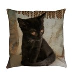 Little Black Kitten Everyday Pillow