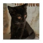 Little Black Kitten Tile Coaster