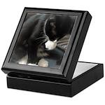Tuxedo Kitten Keepsake Box