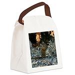 Chipmunk Canvas Lunch Bag