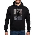 Black Cat at Screen Door Sweatshirt