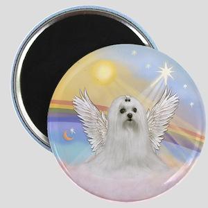Maltese Angel (C) Magnet