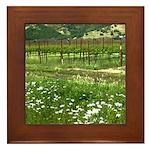 wine country silverado trail Framed Tile