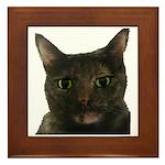 CAT FACE Framed Tile