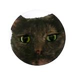 CAT FACE 3.5