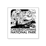 Carlsbad Caverns National Park Sticker