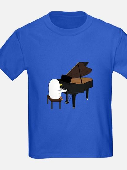 Concert Pianist T