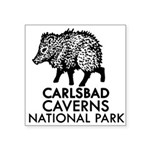 Carlsbad Caverns National Park Javelina Sticker