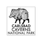 Carlsbad Caverns National Park Javelina Sticker