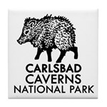 Carlsbad Caverns National Park Tile Coaster
