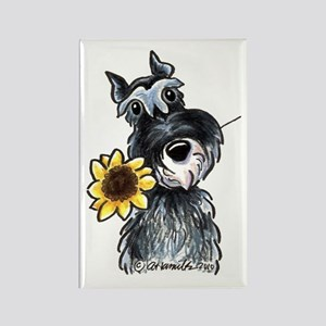 Sunflower Schnauzer Rectangle Magnet
