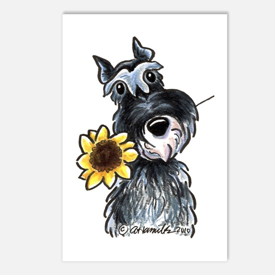 Sunflower Schnauzer Postcards (Package of 8)