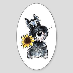 Sunflower Schnauzer Sticker (Oval)