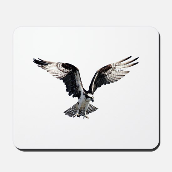 Osprey in Flight Mousepad