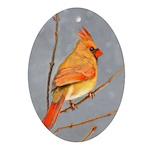 Cardinal on Branch Oval Ornament