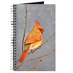 Cardinal on Branch Journal