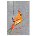 Cardinal on Branch Large Poster