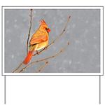 Cardinal on Branch Yard Sign