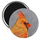 Cardinal on Branch Magnet