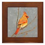 Cardinal on Branch Framed Tile