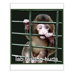 Lab Testing Hurts Small Poster