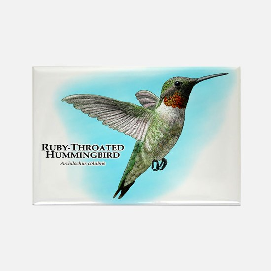 Ruby-Throated Hummingbird Rectangle Magnet