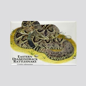 Eastern Diamondback Rattlesnake Rectangle Magnet
