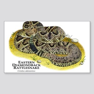 Eastern Diamondback Rattlesnake Sticker (Rectangle