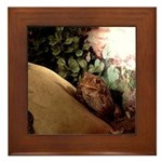 Baby Patches the Toad Framed Tile
