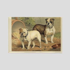 Bulldogs antique print Rectangle Magnet