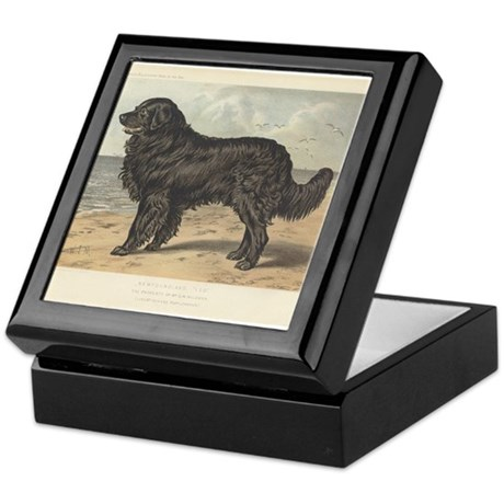Newfoundland Dog antique prin Keepsake Box