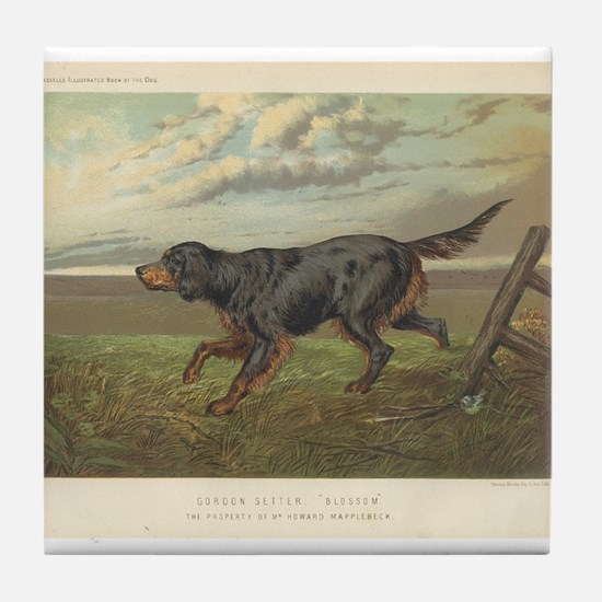 Hunting Dog antique print Tile Coaster