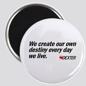 We Create Our Own Destiny Magnet