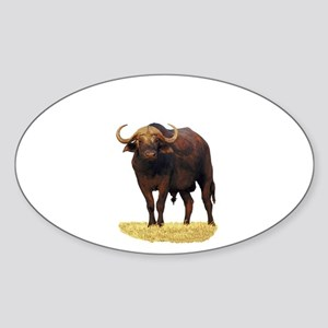 African Water Buffalo Sticker (Oval)
