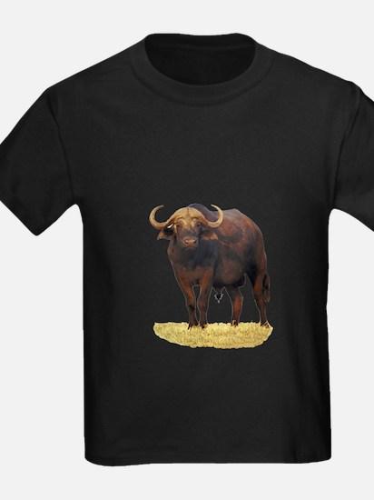 African Water Buffalo T